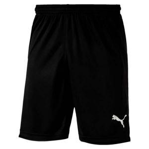 Ftblnxt shorts - puma