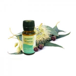 Eucalyptus, essential oil - 10ml - azoor